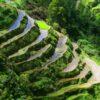 Terrasses d'arròs Banaue
