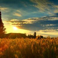 sunrise-2465122_1920